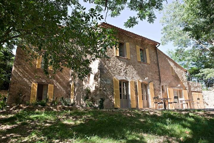 Un moulin au cœur d'un vignoble de Provence.