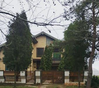 Vila Nadia - Kikinda - Ev