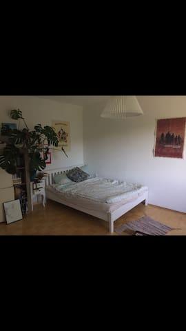 1-Zimmer Wohnung am Stadtpark