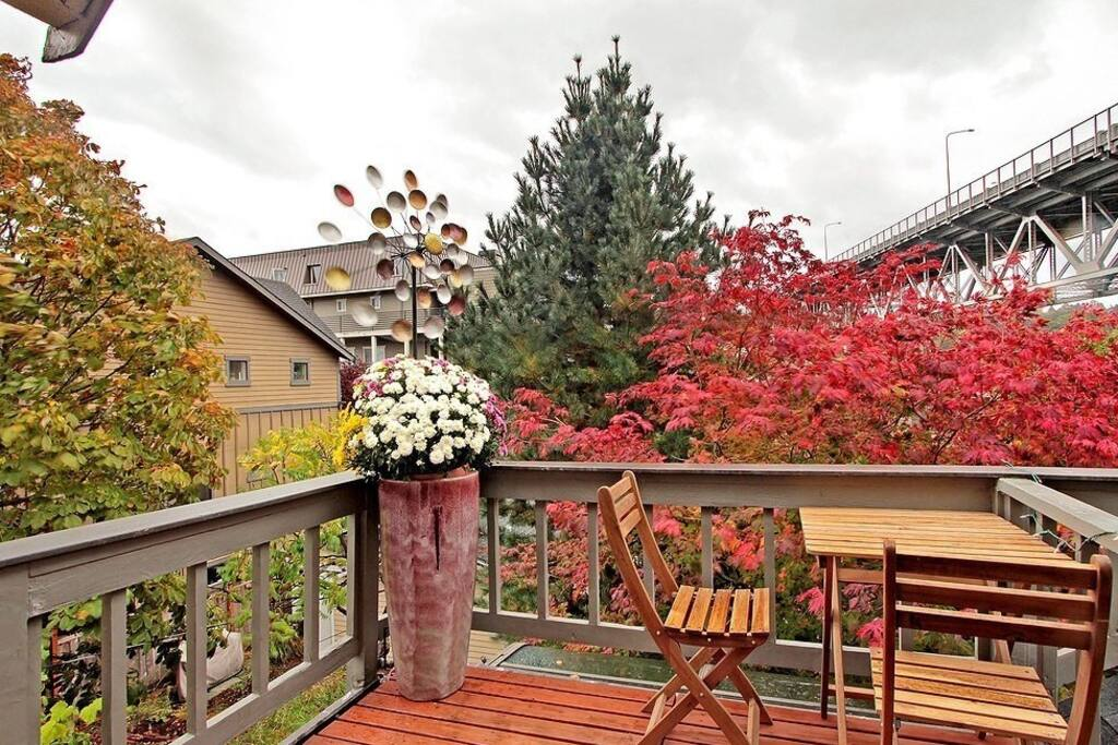 Fall leaves from the master deck.