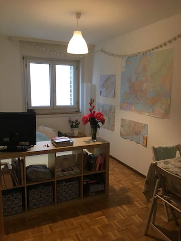 Private Room in the City Centre - Fribourg - Flat