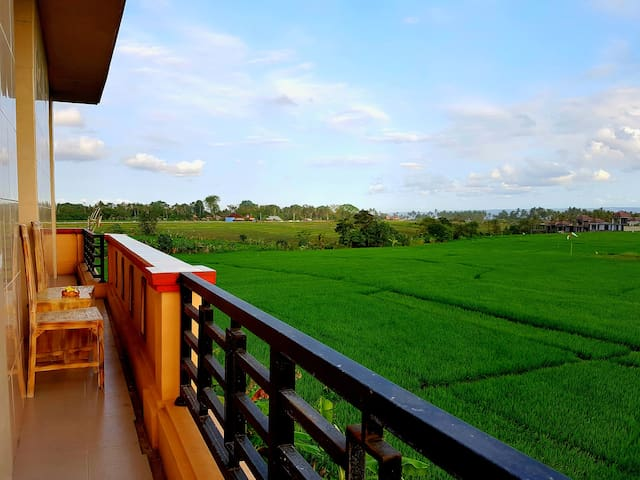 Putra House with rice paddy view