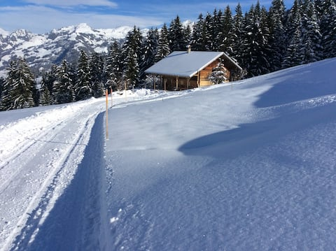 Mountain house, quiet, direct ski slopes access