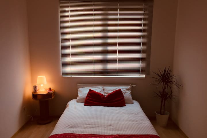 Beautiful central private double room with parking