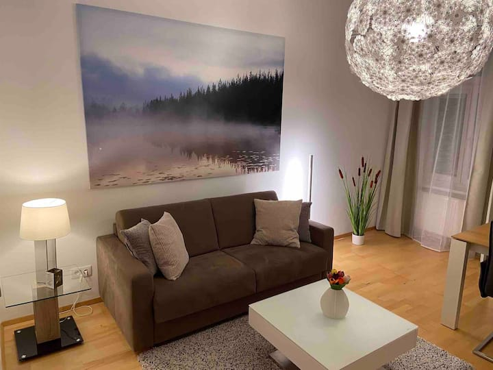 ⭐️New cozy apartment🚭Relax+Netflix🚭12min to center⭐️