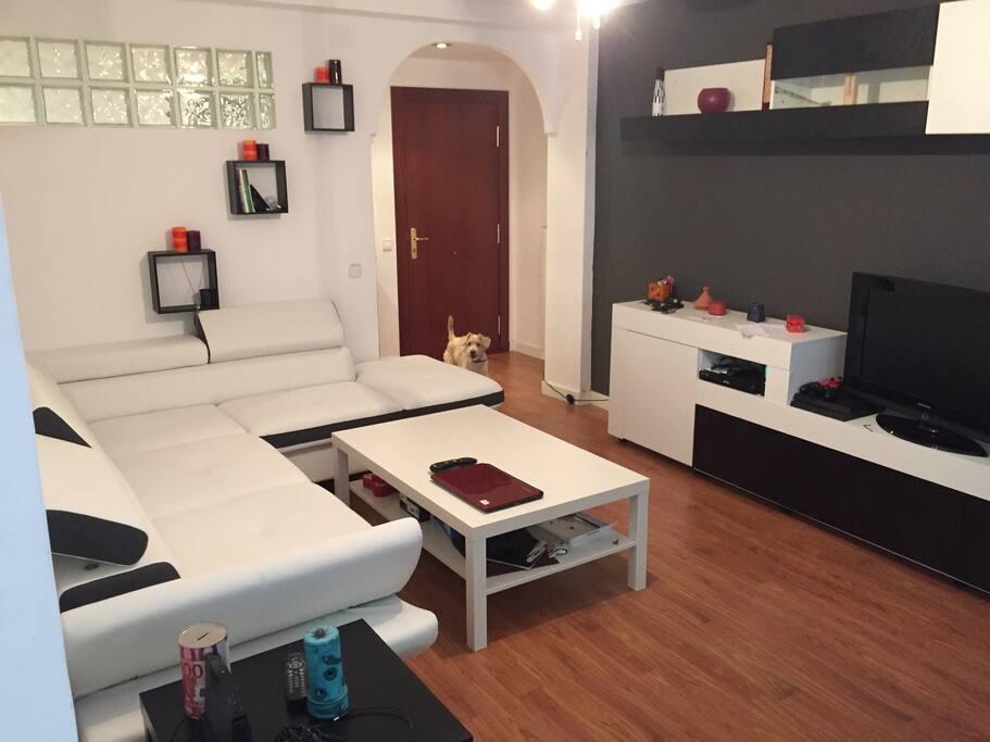 Sanse apartment apartamentos en alquiler en san sebasti n de los reyes comunidad de madrid - Apartamentos en san sebastian de los reyes ...