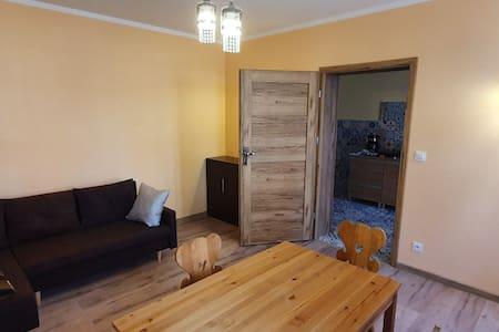 Nowoczesny apartament w Sokołowsku
