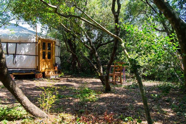 Tulpa Cádiz - Relax Yurt