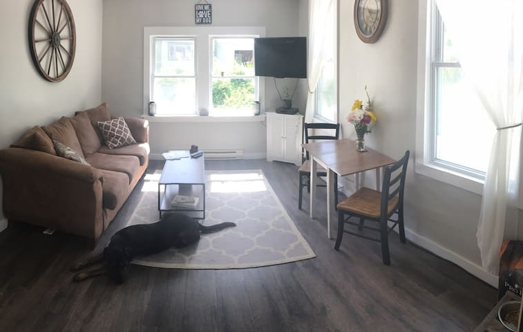 Fully furnished 1 bedroom wifi - Saranac Lake - Lejlighed