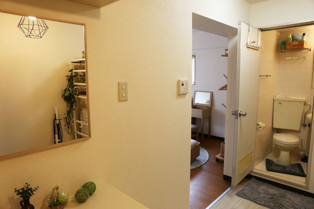 Entrance area with shoe cabinet and closet. Toilet on the right before entering the main room.