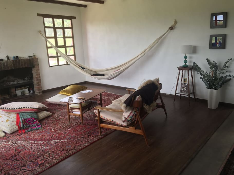 Hammock and chimney in the living room.