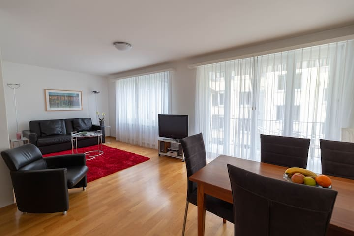 2 BR apartment near the lake / city center D3