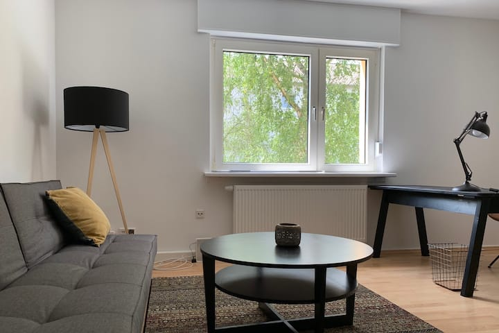 Moderne, top sanierte Wohnung in Neuostheim