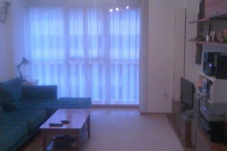 Cantabria 2 habitaciones con parking y wifi - Pomaluengo - Wohnung