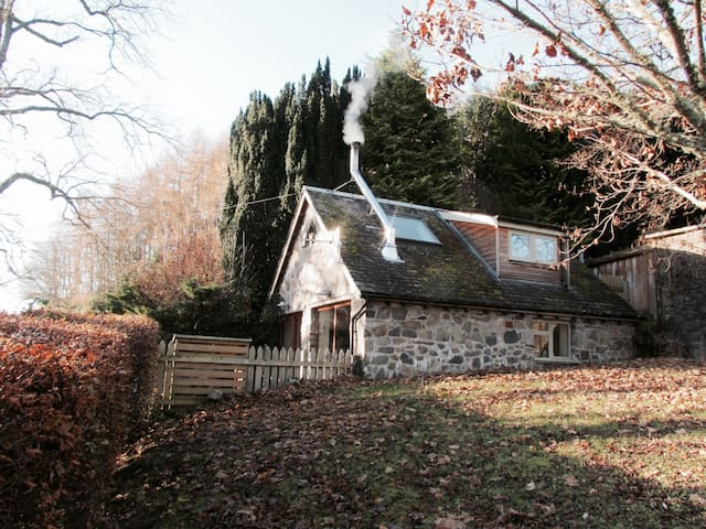The Owl House - Aberfeldy - Nature lodge