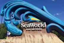 THE AVALANCHE AT SEAWORLD/LACKLAND