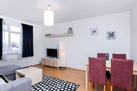 Central Downtown 101 & Free Parking - Reykjavik - Appartement
