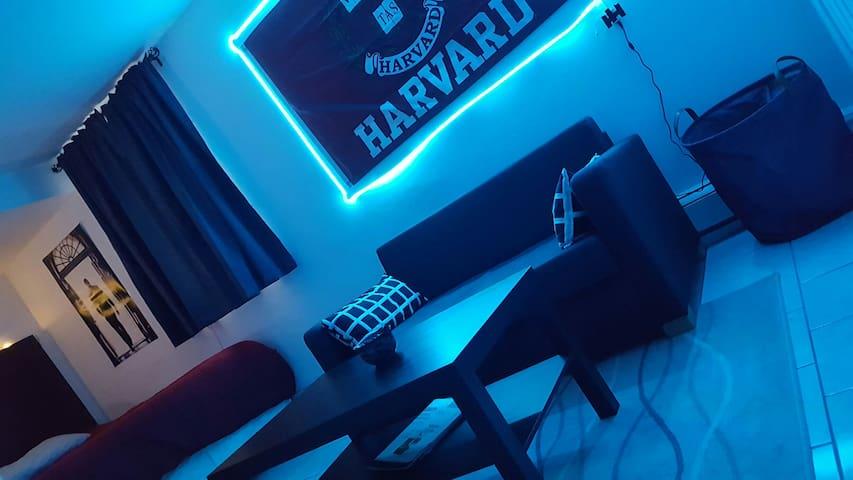 Private Studio near MIT & Harvard (Entire Place)