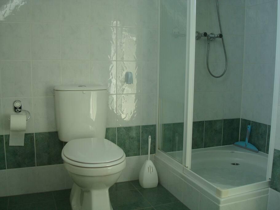 De ruime badkamer met douche en toilet