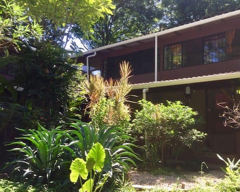 Casa Chandra #4
