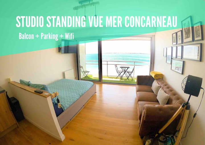 Studio standing vue mer / balcon / parking