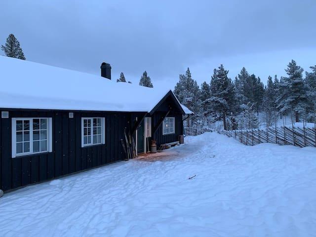 Koselig hytte med høy standard