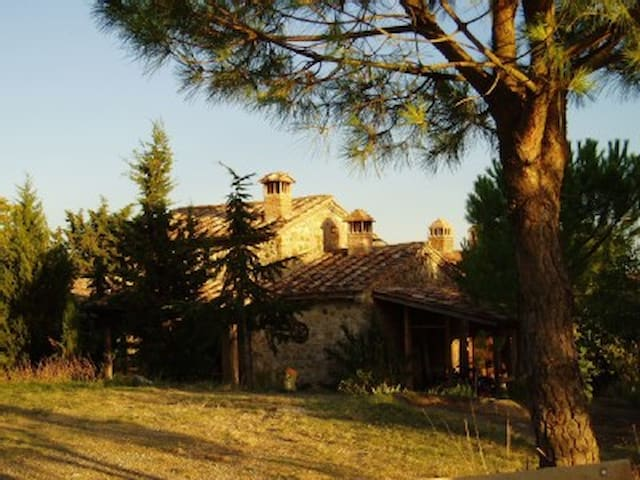 Toskana - Chiusdino : Colle Puccioli - Province of Siena - Appartement