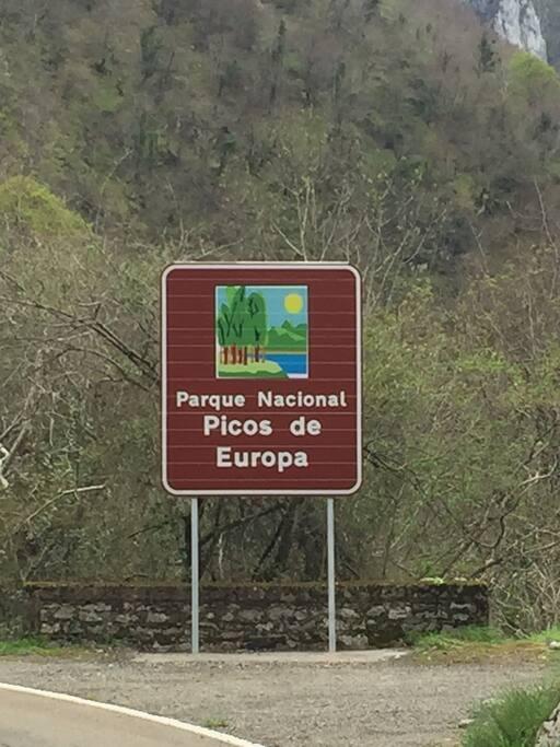 Welcome to the Picos de Europa!