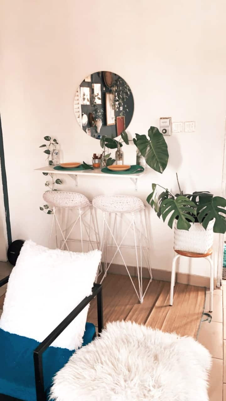The Monstera house