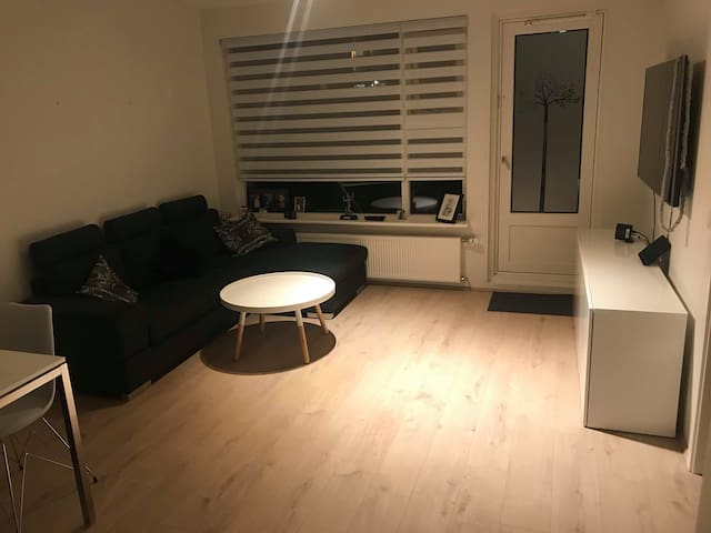 Cosy apartment for 3-4 people, in Reykjavik area