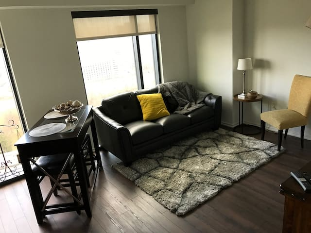 Luxury  Apartment located in Tysons Mall - Tysons - Flat