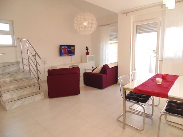 Apartment Ena - Pula - Pis