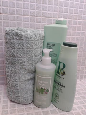 We took care about the most necessary things for the bathroom, so you can save time and money on hygiene products: we provide soft and clean towels, nice hand soap, shampoo, shower gel and hair-dryer.