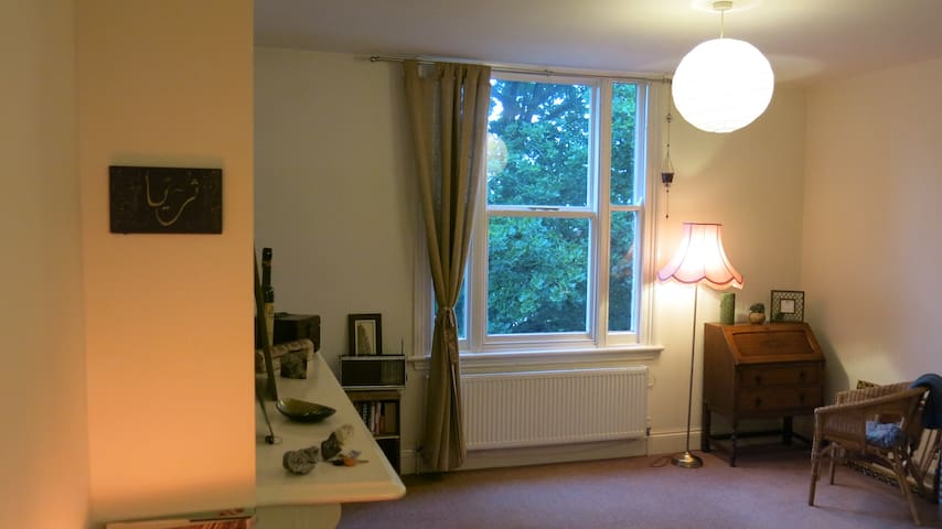 1 bedroom flat - spacious and peaceful - Birmingham - Leilighet