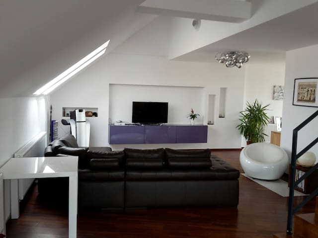 Beautiful and spacious modern flat