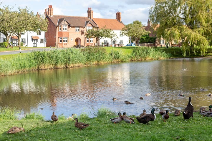 Duck Pond at Front of House