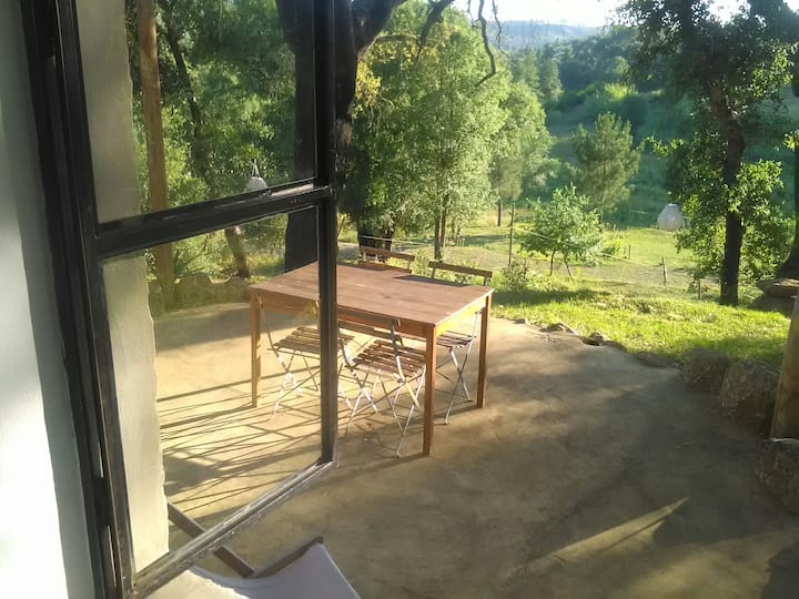 Holiday accommodation with pool in nature
