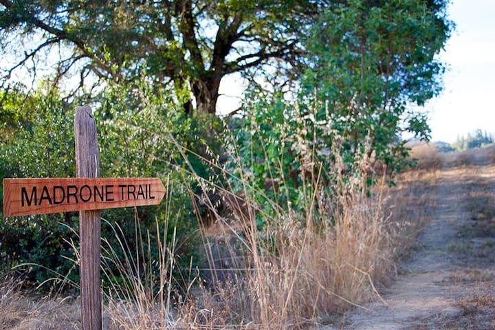Miles of interwoven trails