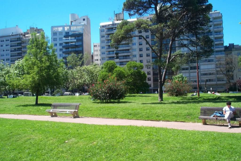 Villa Biarritz Park. It is crossing the street.