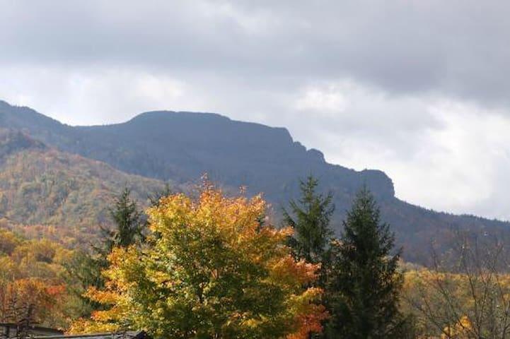 Log cabin home,hottub, views, wifi