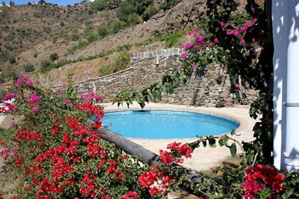 Finca ortiz with private pool houses for rent in c mpeta for Obi easy pool