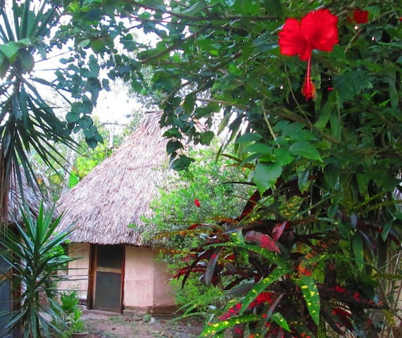 Thatched Roof Cabana