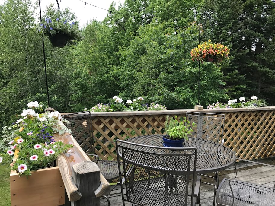 Spring and summer on the back deck.