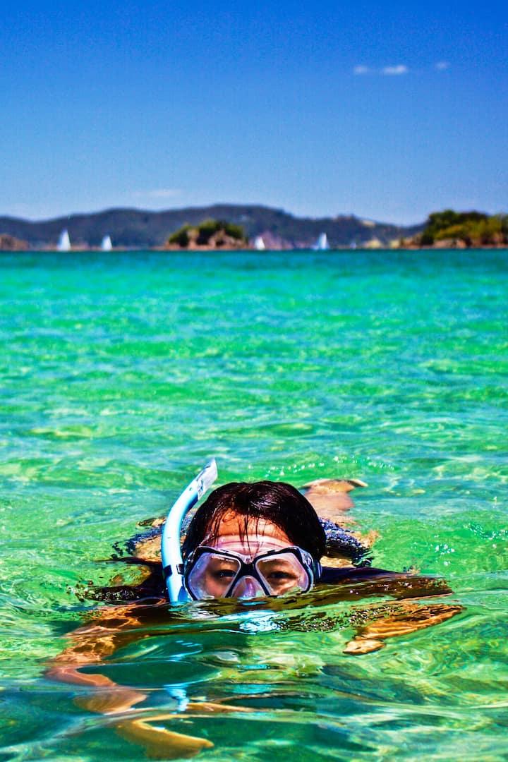 Snorkel or swim