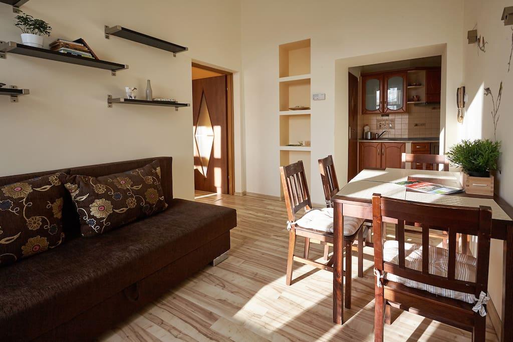 Pokój dzienny z miejscem do spania dla 2 osób / Living room with place to sleep for 2 person