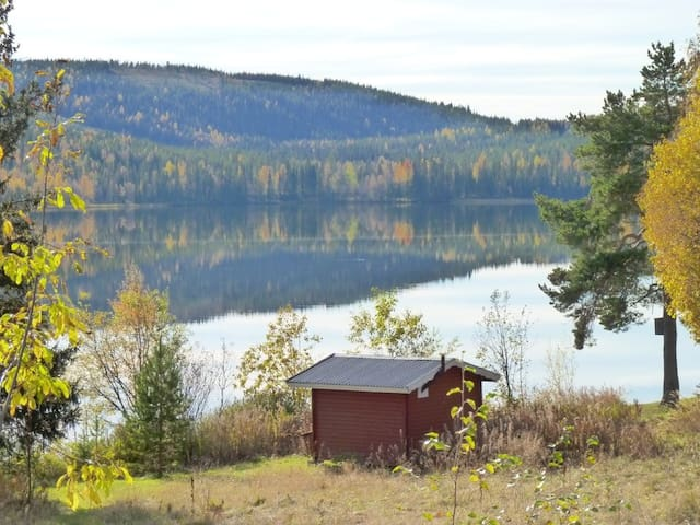 Tip-top tiny house at the lakeside