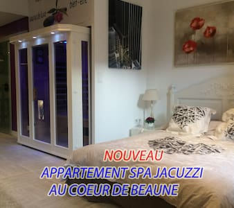 appartement spa jacuzzi au coeur de Beaune - Beaune