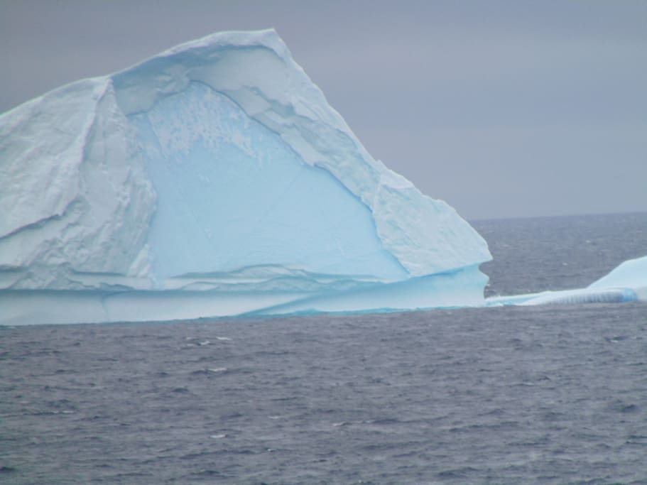 see ice bergs within 10 minutes in May and June