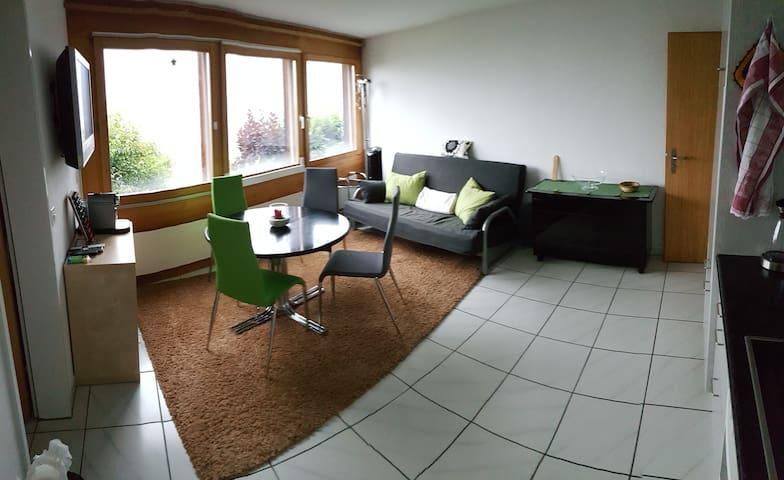 2-Zi-Wohnung mit Sicht auf die Berge - Trin