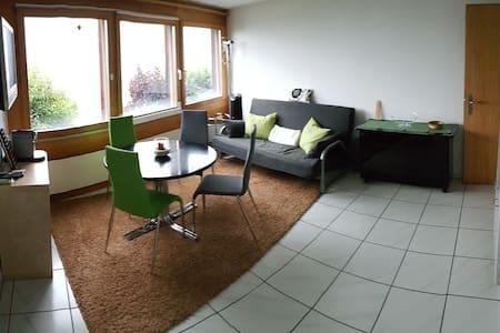 2-Zi-Wohnung mit Sicht auf die Berge - Apartment